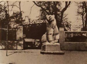 Медведь. Перед входом в Московский зоопарк