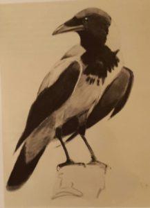 Ворона. 1950