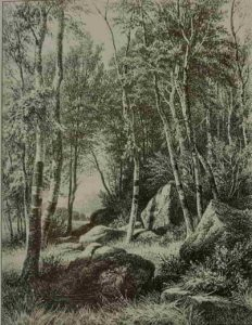 Шишкин. На краю березовой рощи. 1871. Гравюра