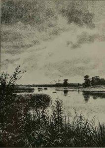 Шишкин. На реке после дождя. 1887. Гравюра