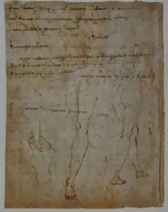 Этюды руки и ног. 1501 г.